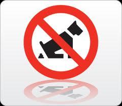 hondenpoep voor bij artikel over vergeving
